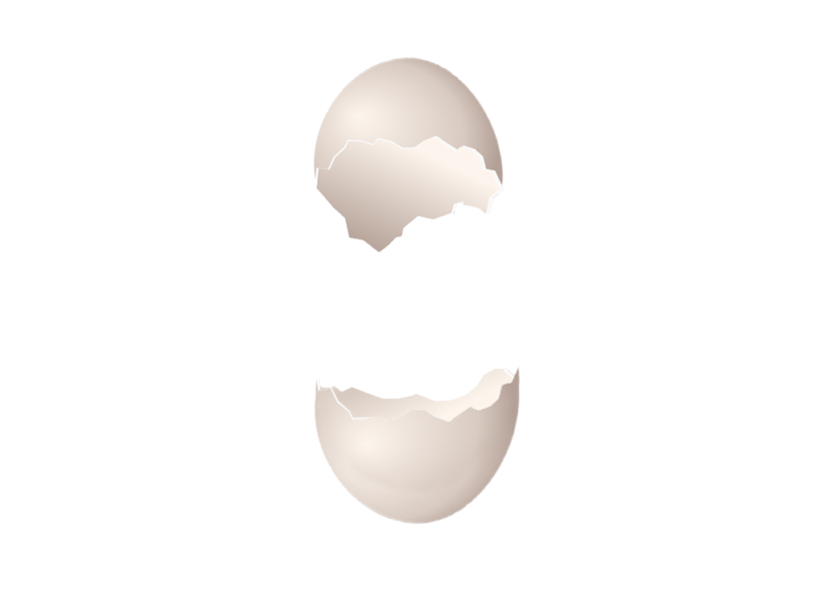 cracked_egg_stock_png_by_graphicstute-das0xo1